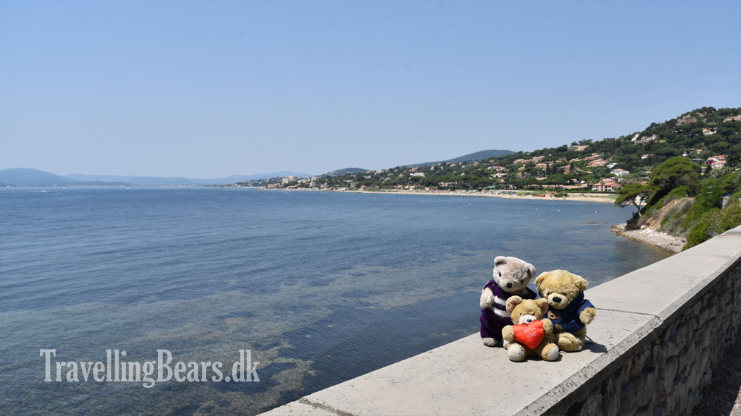 Travelling Bears in Provence