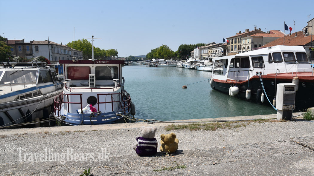 Travelling Bears in  				Beaucaire, Provence