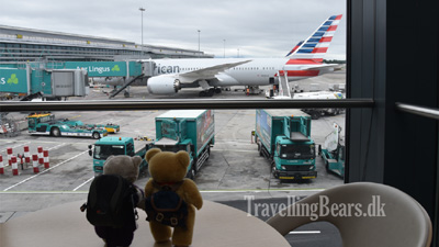 Travelling Bears at Terminal 2 in Dublin Airport