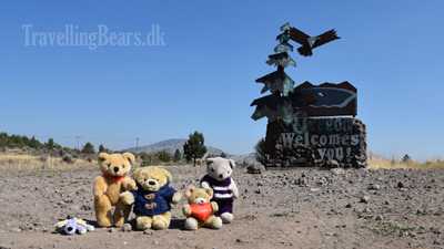 Travelling Bears crossing the border to Oregon, USA