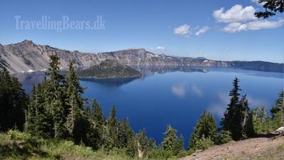 Travelling Bears at the Crater Lake, Oregon
