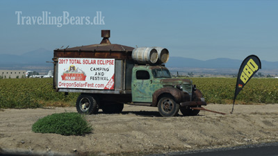 Travelling Bears cruising the highways of Oregon
