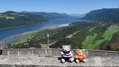 Travelling Bears at Vista Point in Oregon